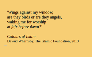 2Colours of Islam quote